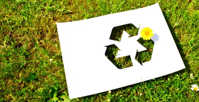 Déclaration Ecofolio : l'éco-conception pour réduire sa facture